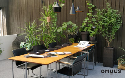 Biophilia in Workplaces